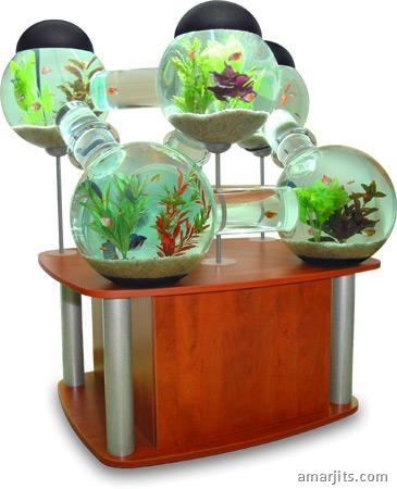 octopus-aquarium-angled-stand