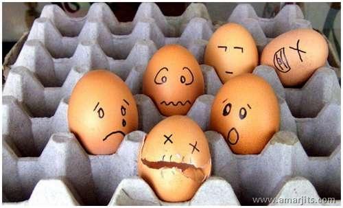 Eggs-amarjits (10)