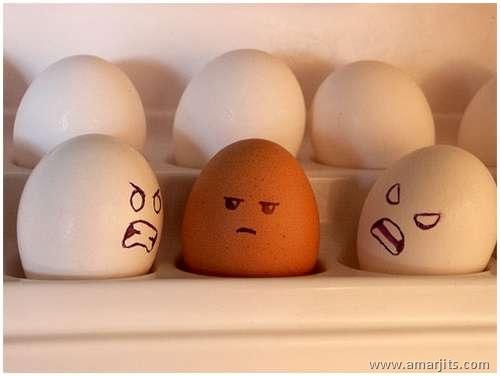 Eggs-amarjits (17)