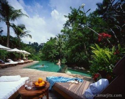 Jungle-Hotel-amarjits-com (9)