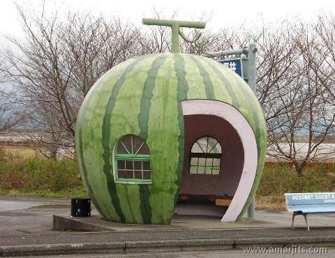watermelonfun31do8