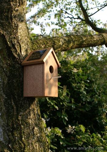 solarbirdhouse01 (1)