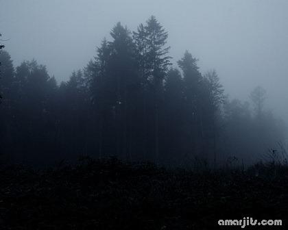 Nature-Amarjits-com (16)