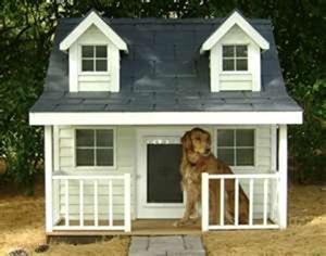 Dog-House-amarjits (9)