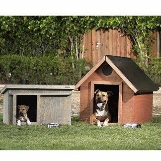 Dog-House-amarjits (10)