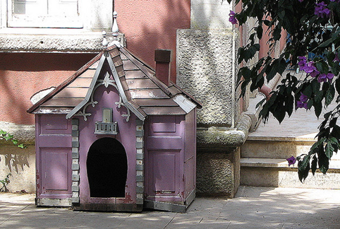 Dog-House-amarjits (4)