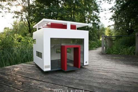 Dog-House-amarjits (7)