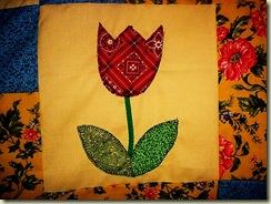 tulips 09 0042