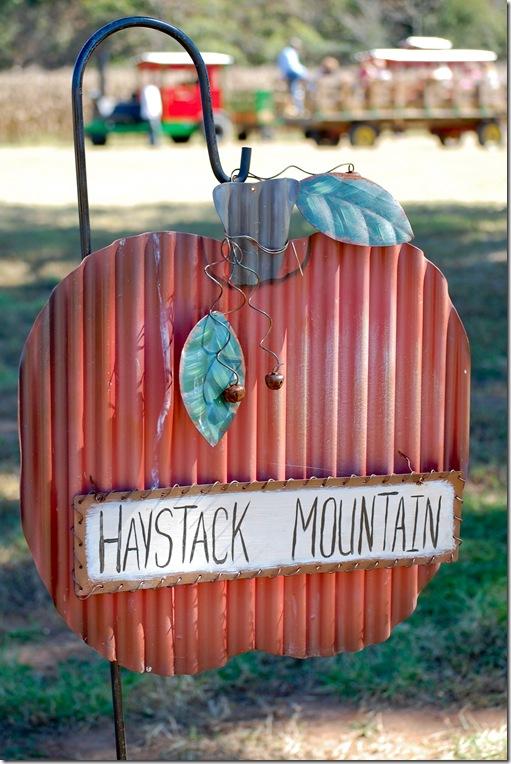 haystack mtn (1 of 1)
