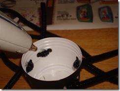 Spider Family 030