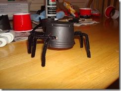 Spider Family 035