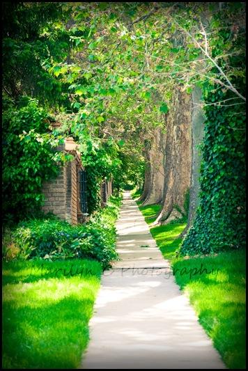 Garden Stroll 12x8 MCP