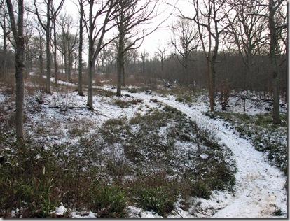 20090204 BHW 7a snow 011