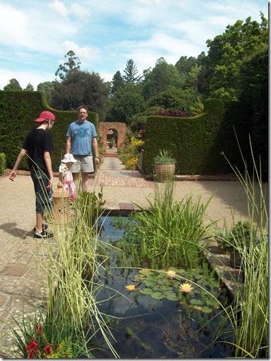 Garden by pond