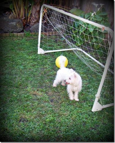 Kayla in goal