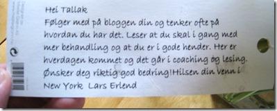 LarsErlend