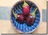 Colour studies aubergines4 002