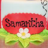 Lady Bug Cake 2-20-10 023.jpg