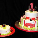 Lady Bug Cake 2-20-10 040.jpg