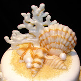 Turquoise Seashell Cake 3-7-10 046.jpg