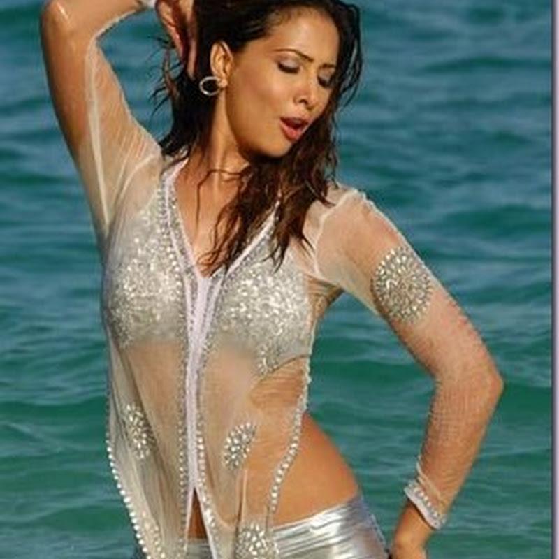 Kim Sharma Back to her bikini!