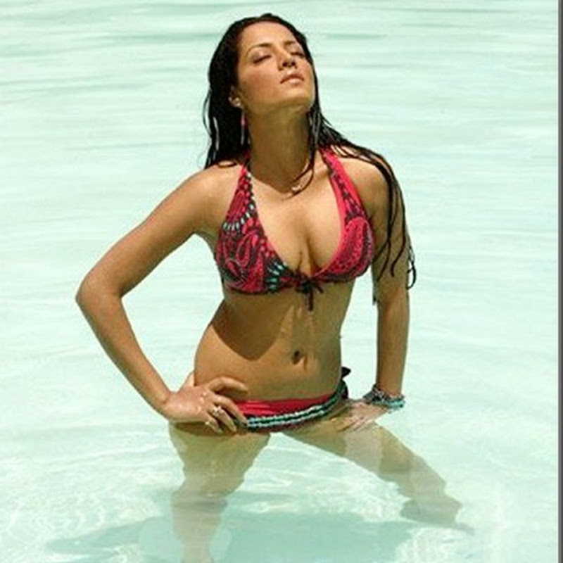 Celina Jaitley exposed pictures