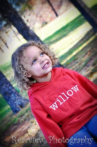 willow002_2