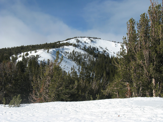 Photo of  Tamarack Peak 2011-01-16