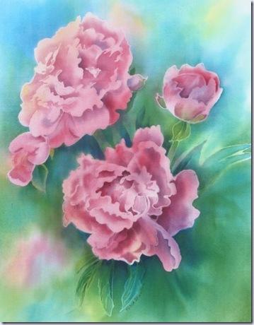 coloursandtextures pink peonies 517