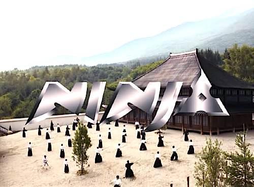 Ninja-1.jpg