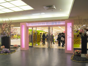 花の展覧会
