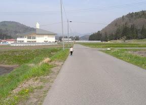 公民館への道