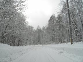 舟鼻峠は圧雪でした