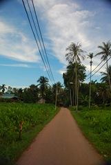 Jalan Kampung ku...