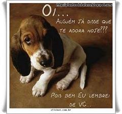 cachorrinhos_2009