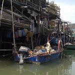 Bootsfahrt in Tai O - 5