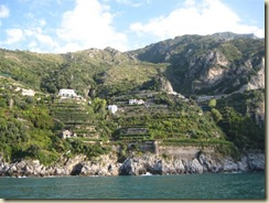 Amalfi Coast - Terraced Farming (Small)