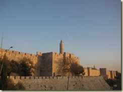Citadel (tower of David) (Small)
