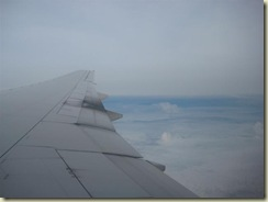 777 over the Amazon Forest (Small)