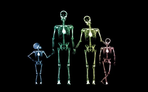 (35)HD-X-Ray-View-Desktop-Wallpaper-happy-family