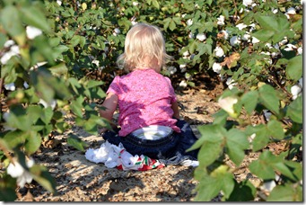 ridin and cotton 091310 (25)