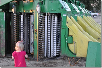 cotton picker 2010 (10)