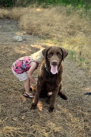 [take the dogs to go swim! 052411 (21)[4].jpg]