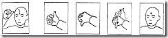 Signo: Parámetros formativos