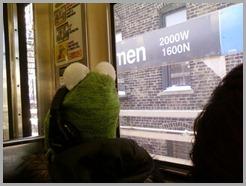 Kermit Hat