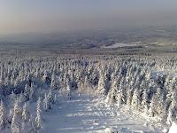 Blick von der Wolfswarte Richtung Altenau