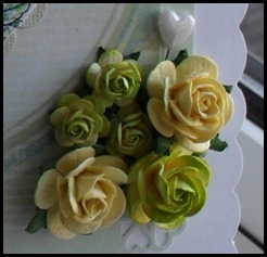 ABC Ovals Flowers