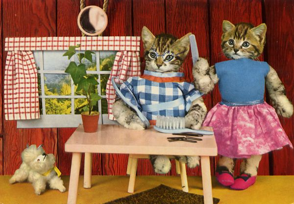 Cartes Postales Pop et  Kitsch des annes 50, 70 et 70 - Pop and kitsch vintage postcards from the fifties, the sixties and the seventies : Une vie de chien
