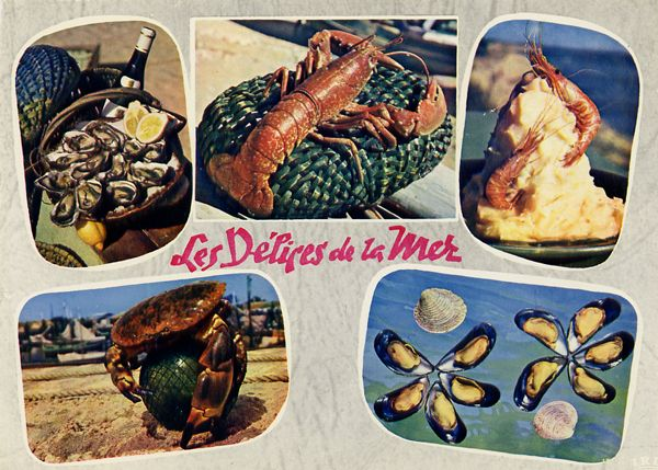 Cartes Postales Pop et  Kitsch des années 50, 70 et 70 - Pop and kitsch vintage postcards from the fifties, the sixties and the seventies : Divers délices