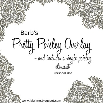 barbderksen_prettypaisley_p